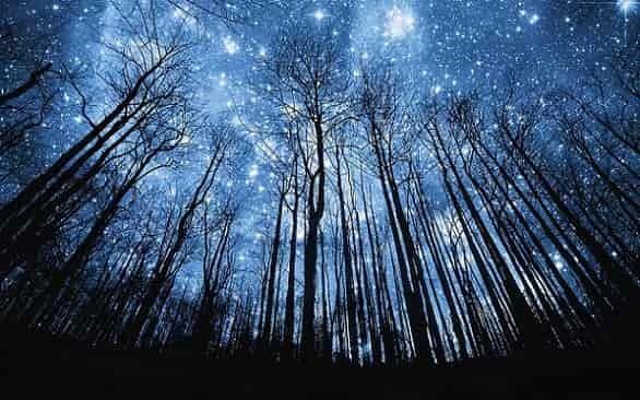 25 октября 2019 года отмечается праздник Андрон Звездочет