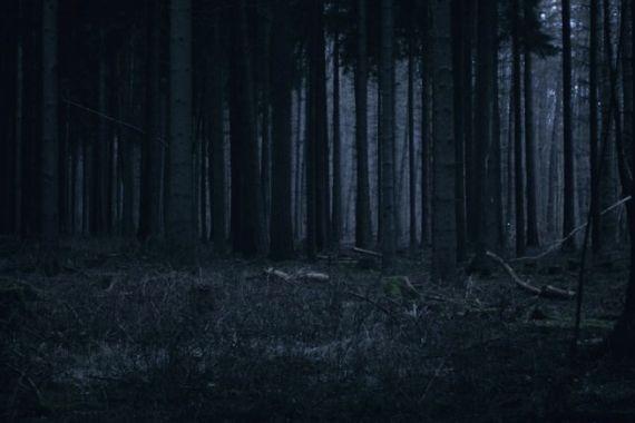 Пенсионер из Карелии изнасиловал и убил 12-летнюю школьницу