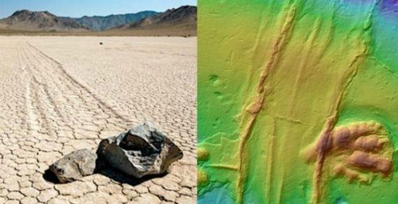 Следы древнего движущегося камня ученые обнаружили на плите с отпечатками динозавра
