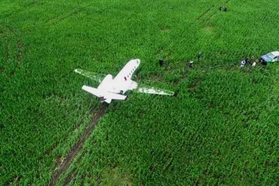В Аргентине пилоты «Сессны» выполнили аварийную посадку на кукурузное поле