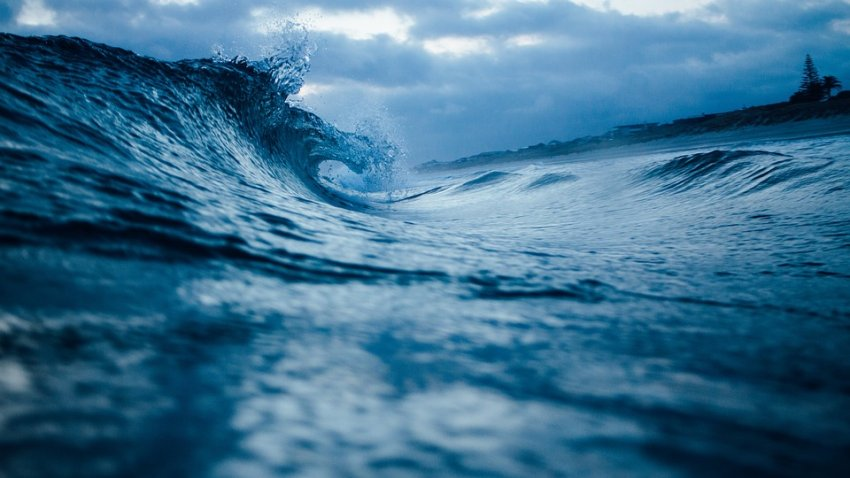 Ученые выяснили, каким был уровень океана 125 тысяч лет назад