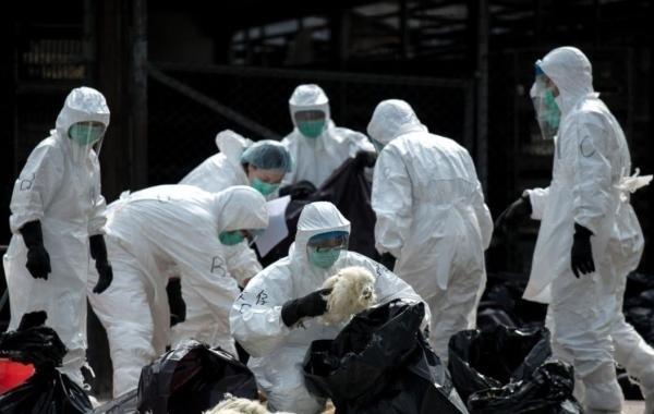 До 131 человекf возросло число погибших от коронавируса