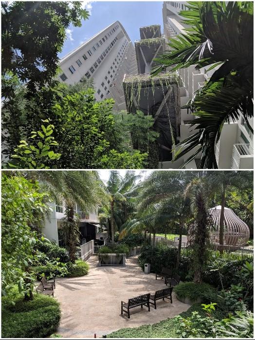 Вертикальный сад, генератор электричества и живой кондиционер Сингапура