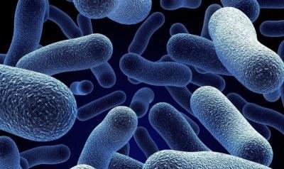 Канадские ученые создали новый мощный антибиотик