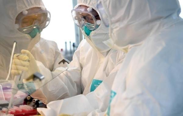 Новых заболевших коронавирусом в России не выявили