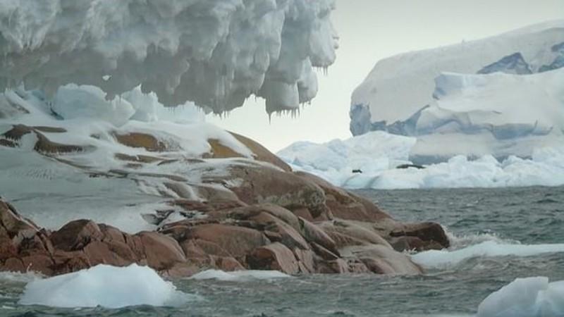 Таяние ледников открыло в Антарктиде новый гранитный остров