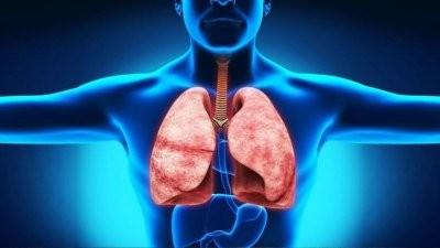 Эксперты назвали тест для проверки работы дыхательной системы в домашних условиях