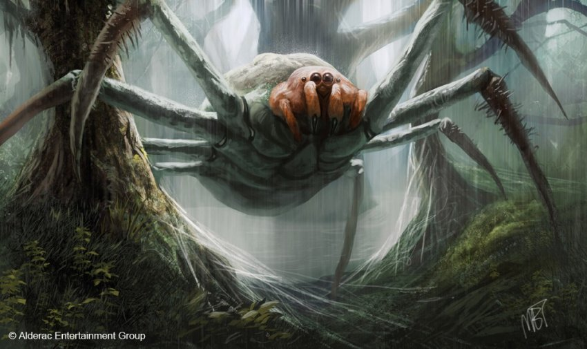 Журналист и краевед рассказал о гигантских пауках-людоедах