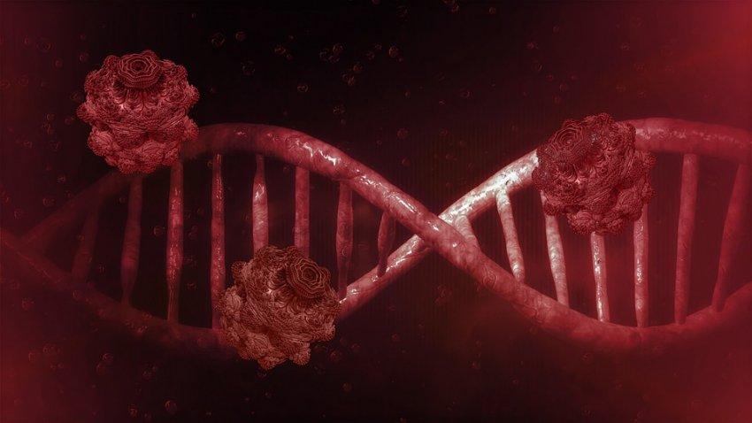 Китайские ученые установили, что коронавирус мутировал 149 раз