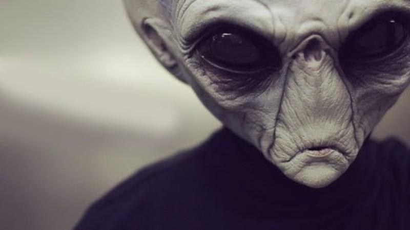 Ученые считают, что во Вселенной есть жизнь, но она не разумна