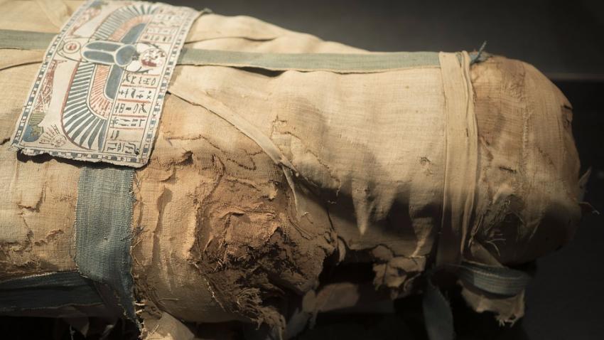 Археологи нашли место, где древние египтяне мумифицировали тела умерших