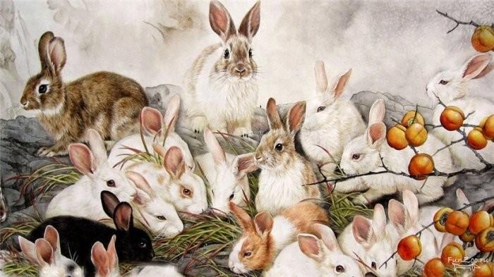Почему на Руси крольчатина считалась запрещённым мясом?