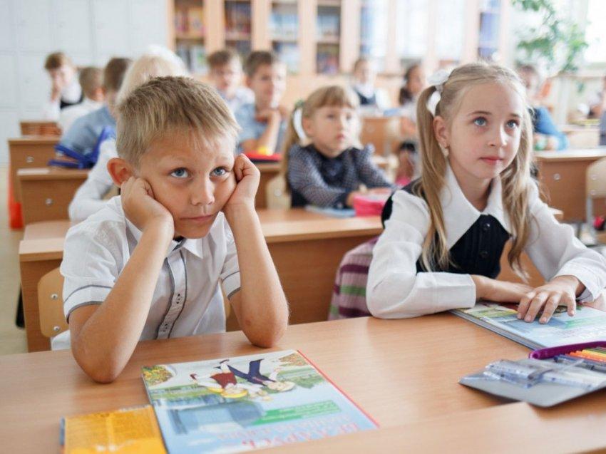 Школьная деградация или почему не работает преподавание знаний
