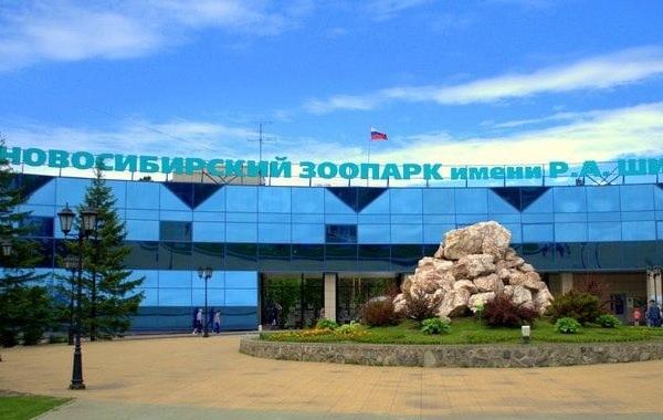 В Новосибирском зоопарке рассказали, как будет организована работа для посетителей