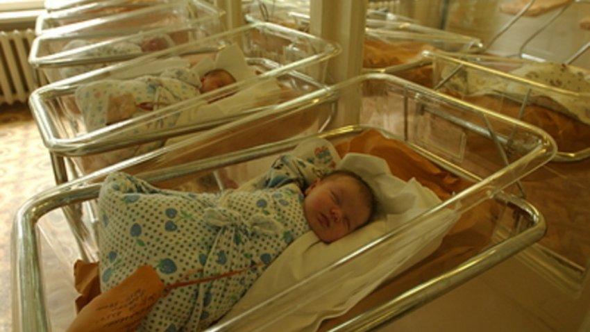 Суррогатные материнские инкубаторы в России по заказу китайцев