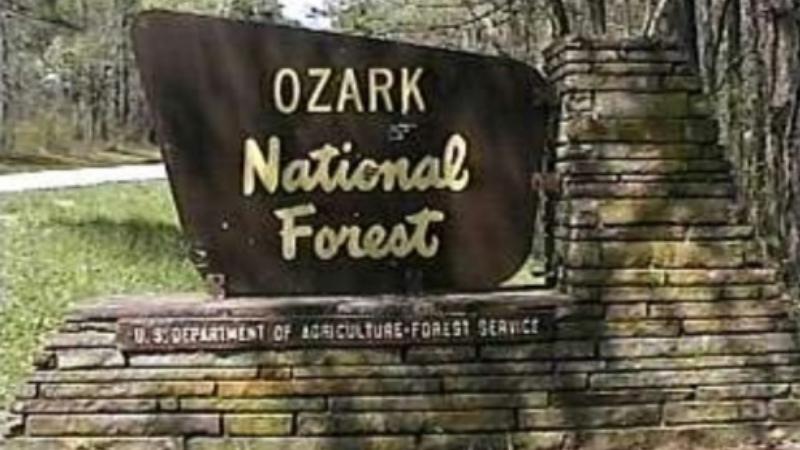 В национальном парке Озарк туристы столкнулись со снежным человеком