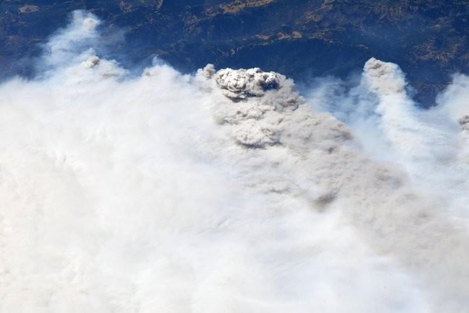 Пожары в Калифорнии запечатлели с МКС: в Сети появились снимки
