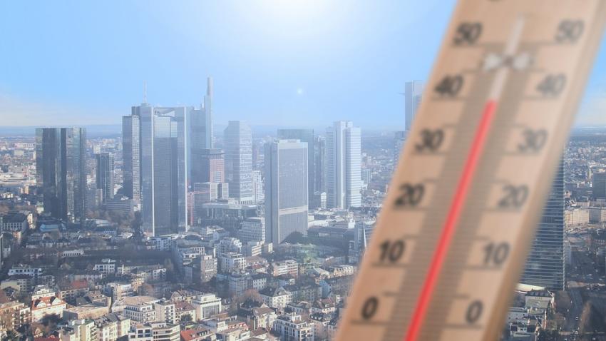 Глобальное потепление освободит новые микробы и увеличит смертность от жары