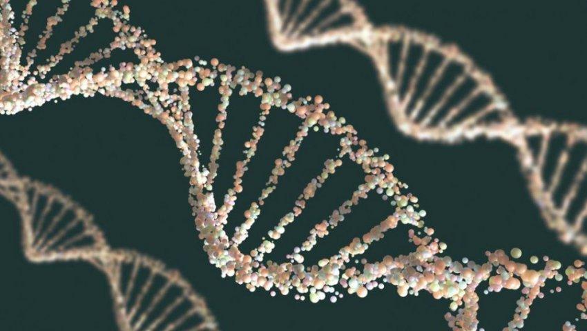 У человека обнаружены следы неизвестного ДНК
