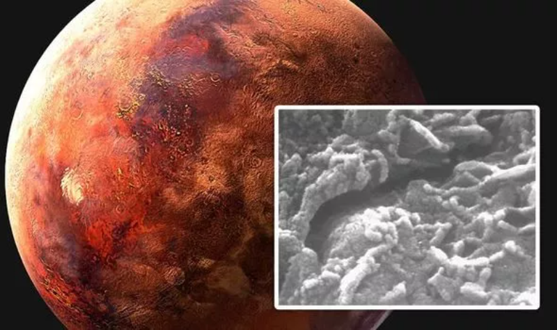 Жизнь на Марсе подтверждена: в марсианском метеорите нашли «червей»