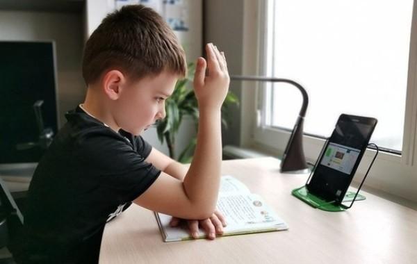 Родители выступают против возвращения дистанционного обучения