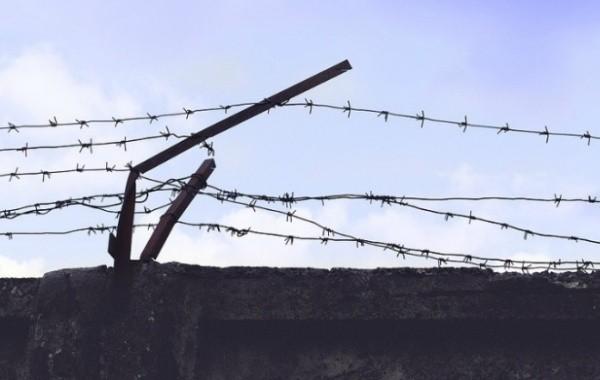 В ЛПДР предложили перенести амнистию по уголовным делам