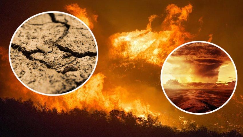 В 2020 году произошло рекордное количество климатических катастроф