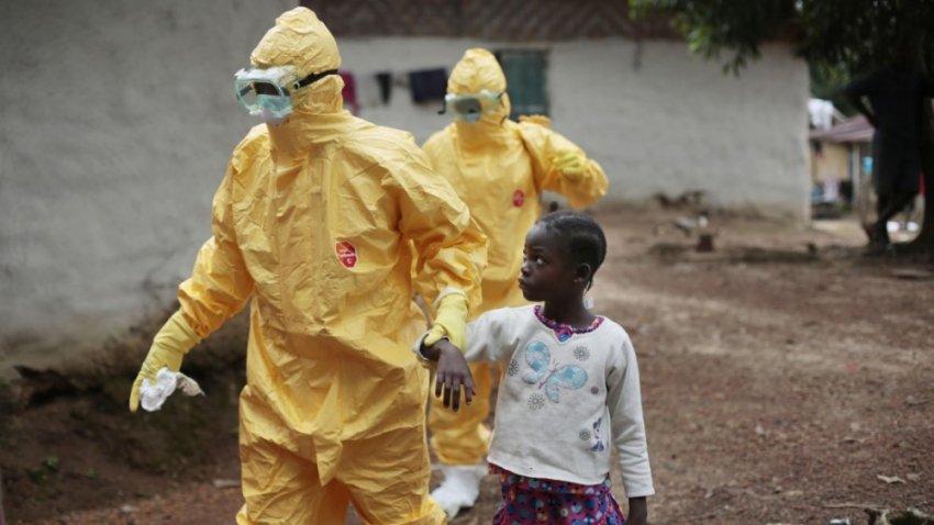Разрушение экологии может выпустить на свободу новые вирусы