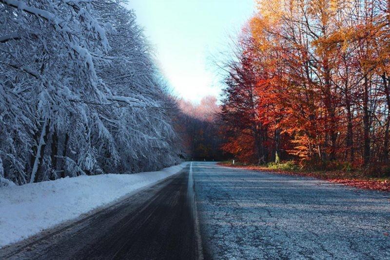 Гидрометцентр предупредил россиян об аномальном потеплении в январе 2021 года