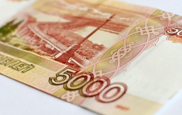 Определены сроки подачи заявления на получения детской выплаты в размере 5 тысяч рублей