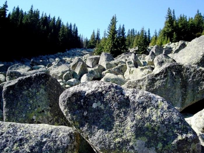 """Ценность и загадка """"Каменной реки"""""""