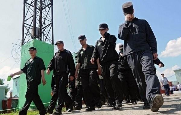 Вопрос об уголовной амнистии в России будет рассмотрен в 2021 году
