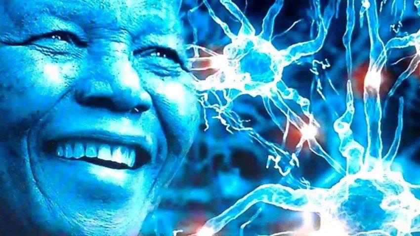 Эффект Манделы: ошибка памяти или связь с параллельной вселенной?