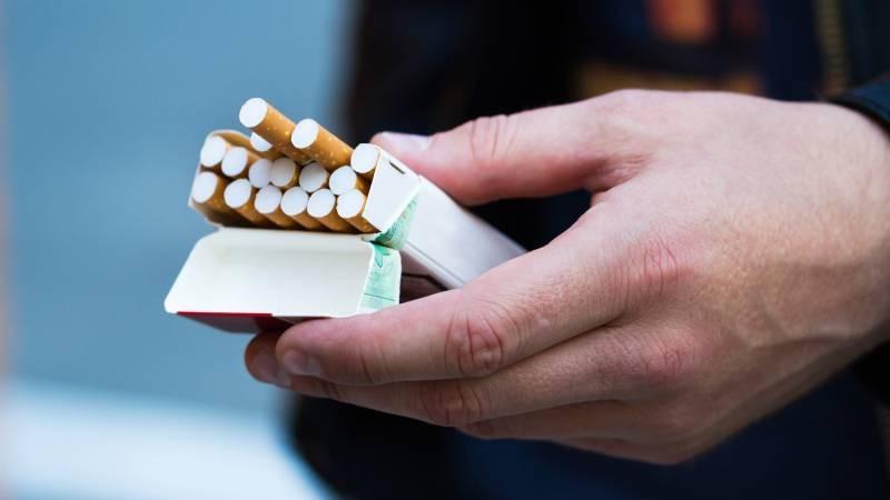 Новые законы с 1 апреля 2021 года в России изменили цены сигарет и сдачу экзаменов на права