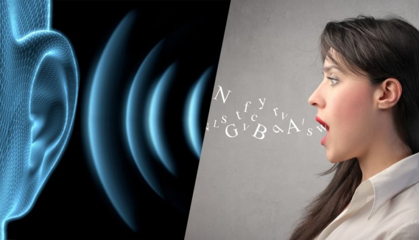 Человеческий язык: одна из главных мировых загадок