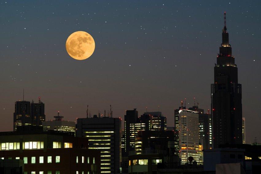 Необычная Луна, названная цветочной, взойдет на небе в 2021 году
