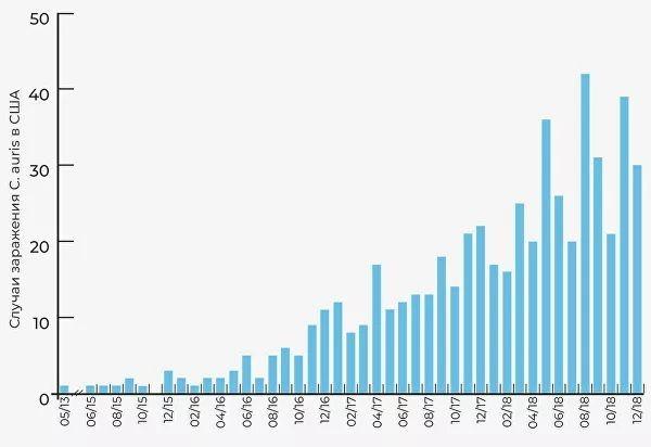 Черная плесень: новая смертельная инфекция захватывает мир