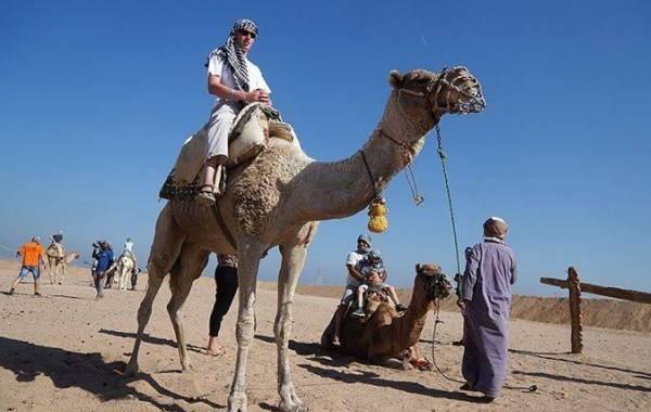 Названа главная интрига возвращения рейсов на курорты Египта