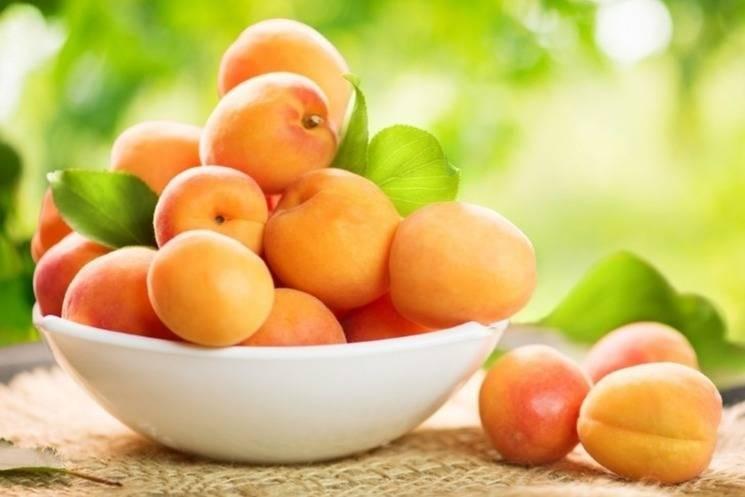 Кому можно, а кому нельзя употреблять абрикосы