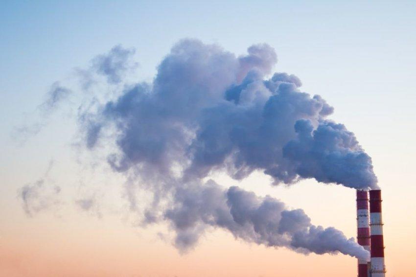 Россия собралась зарабатывать на «торговле воздухом»: что такое углеродные единицы