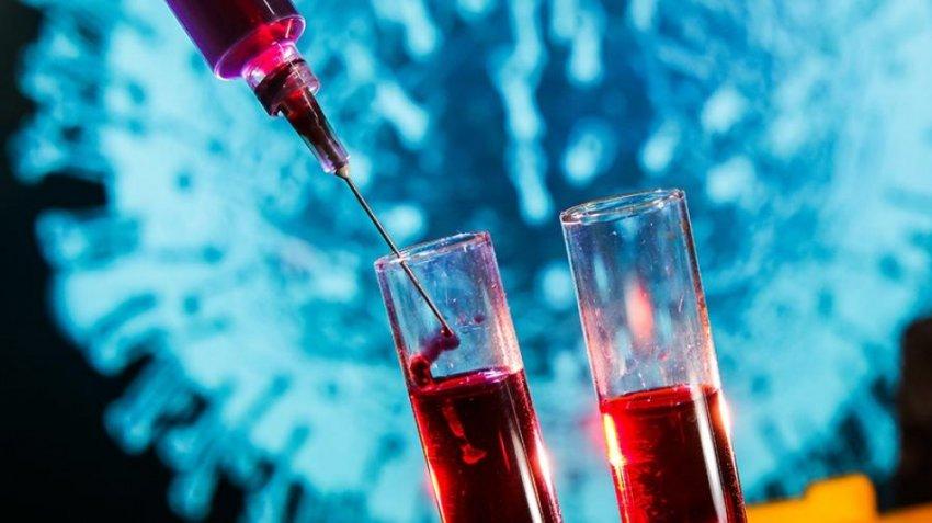 Откуда появились версии об искусственной природе коронавируса