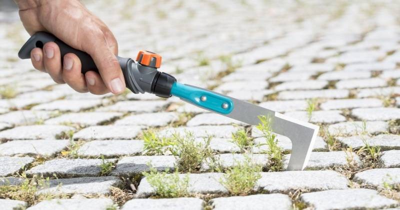 Какими средствами можно обработать тротуарную плитку от травы и мха