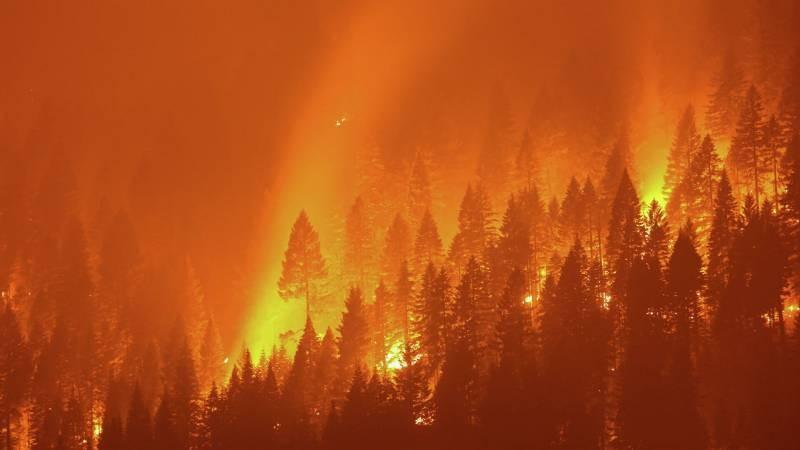 Подробности пожаров в Анталии интересуют туристов