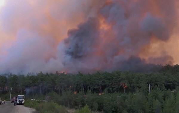 Террористы признались в поджоге турецких лесов