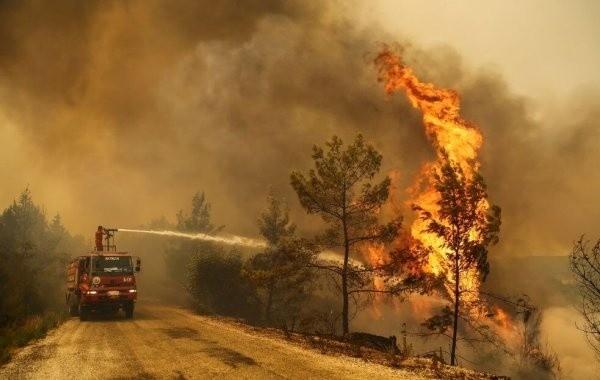В Турции продолжается борьба с лесными пожарами