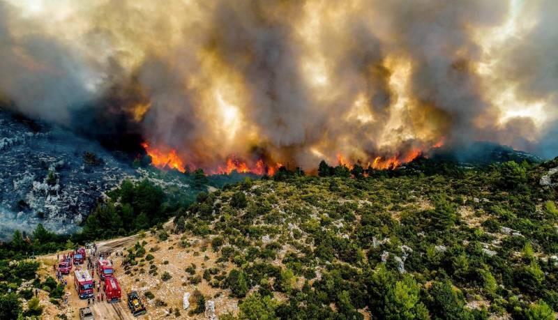 Как обстоит ситуация с лесными пожарами в Турции на 3 августа 2021 года