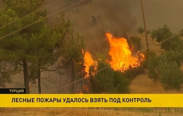 Пожарным Турции удалось локализовать почти все лесные пожары в стране