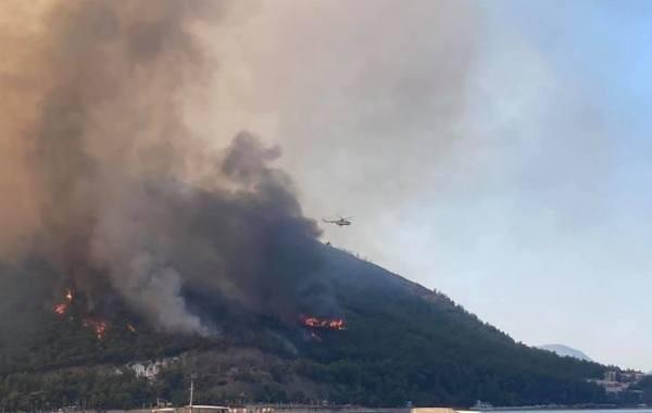Россияне озадачены вопросом, будут ли закрывать Турцию из-за лесных пожаров