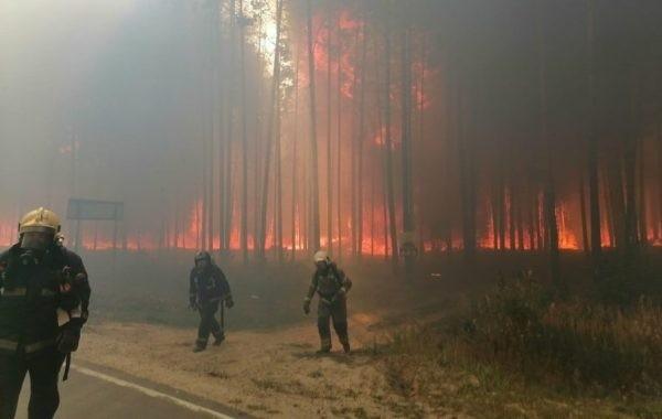 В Марий Эл введен режим ЧС из-за масштабных лесных пожаров