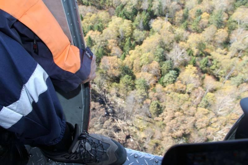 На месте крушения Ан-26 под Хабаровском обнаружены тела 6 членов экипажа